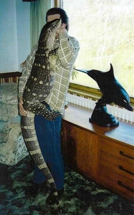 Ornate Monitor Facts And Pictures